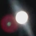 Illustration du profil de shaman07
